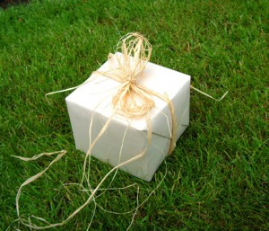 Eco Friendly Fathers Day Gift
