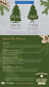 The Carbon Footprint of a Christmas Tree