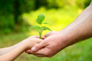 Father's Day perfect gift - reduce carbon footprint