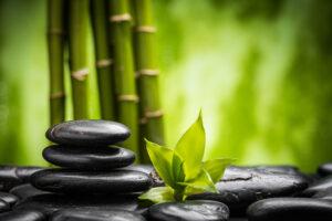 sustainable bamboo