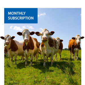 Personal Carbon Offsets (monthly subscription)