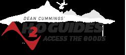 Dean Cummings H2O Guides Access The Goods logo