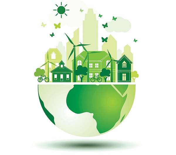 What Are the Best Ways to Find Carbon-Neutral Products?