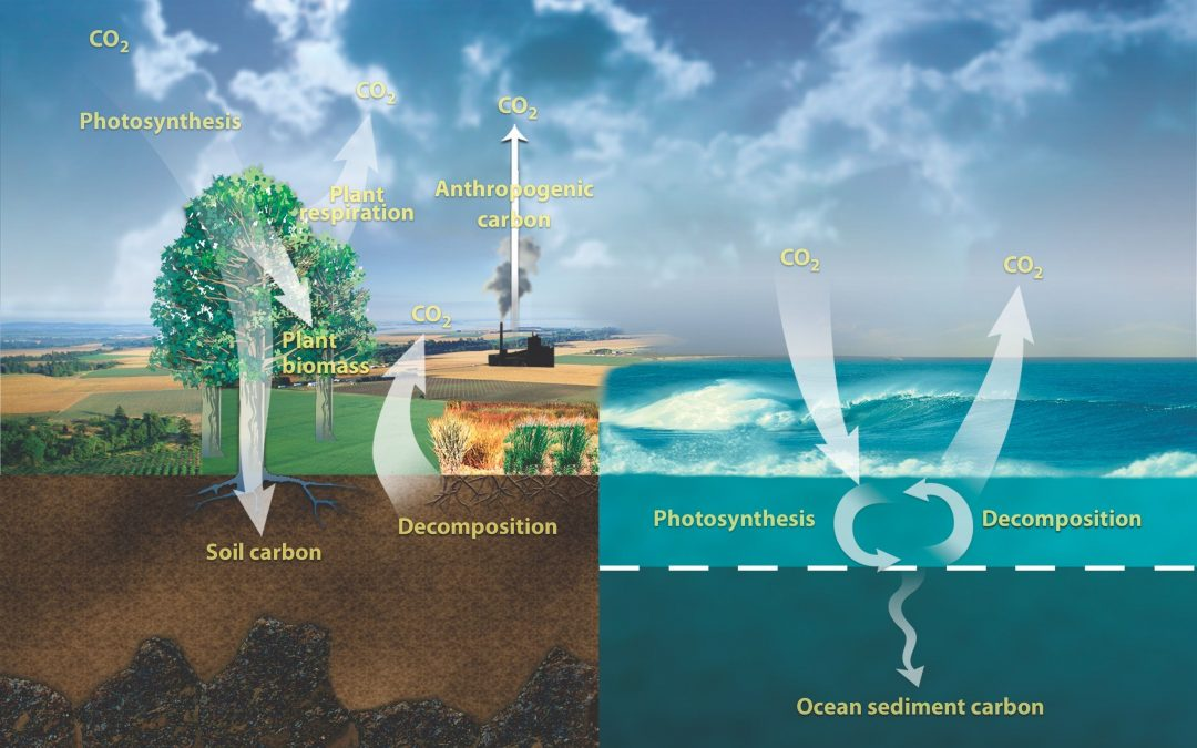 Can We Re-Balance the Global Carbon Cycle Before It's Too Late?