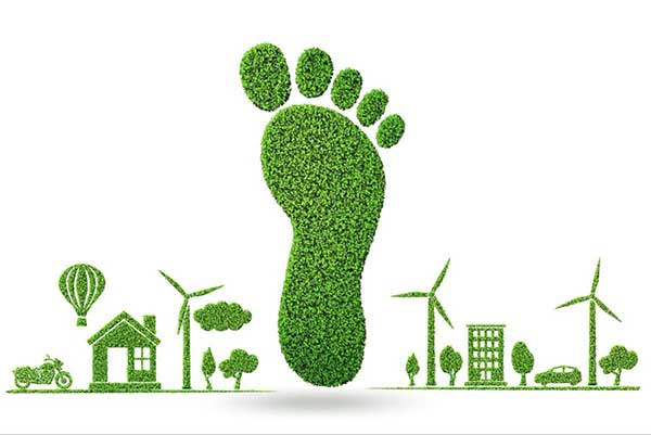 Reducing Your Carbon Footprint: How to Make a Difference?