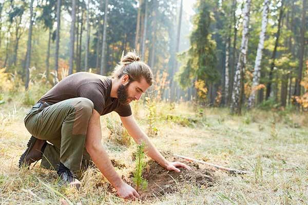Carbon Offset Environmental Help | Man Planting Treenvironmental help man planting tree