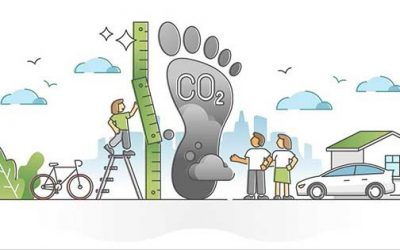 How to Buy a Carbon Offset: A Quick Guide